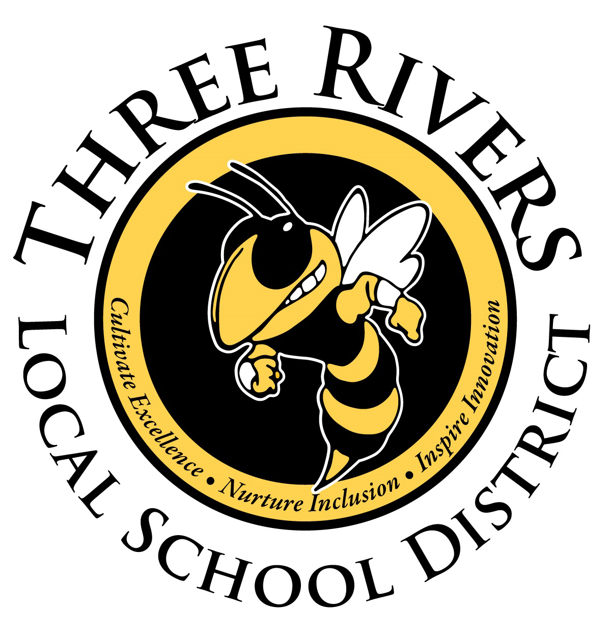 Three Rivers Local School District